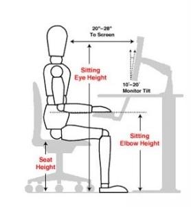 posture 3